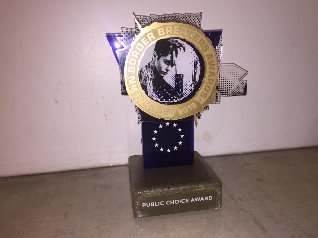 2013 - 2015 public choice award